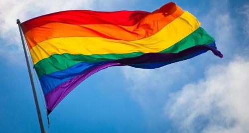 !Rainbow_flag_breeze